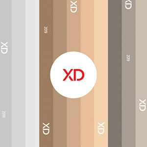 Catálogo XD 2019